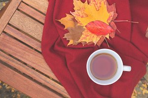 Fall tea L