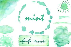 Watercolor clipart Mint