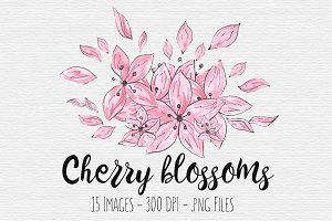 Cherry Blossom Watercolor Clipart