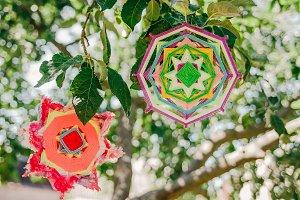 Multicolor Mandalas,Green Background