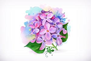 Lilac flowers, watercolor painting