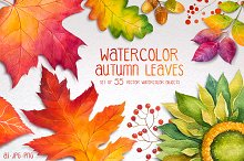 Autumn leaves. Watercolor set.