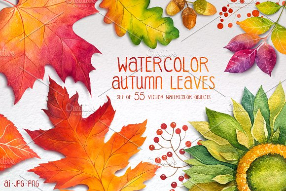 Autumn leaves. Watercolor set. - Illustrations