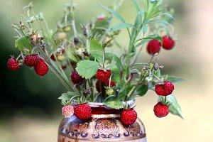Wild strawberry bouquet