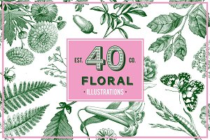 Floral Vintage Vector Illustrations