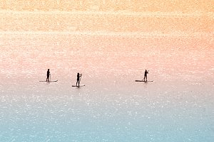 Standup paddle surfers