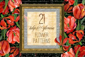 Tulip & gloriosa watercolor patterns