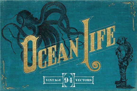 Vintage Nautical Illustrations