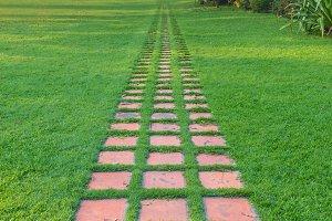 stone walkway in the garden