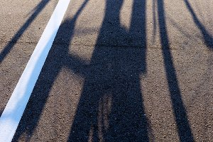 The shadow of a cyclist