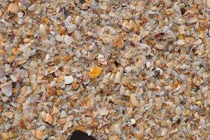 shells texture