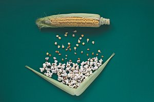 Corn transformation. Table top view.
