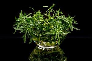 Fresh organic thyme