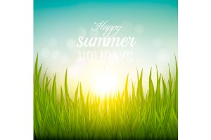 Summer background with grass.