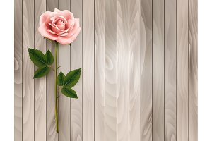 Pink rose on an old wood background.