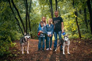 family with children, and husky dogs in the forest