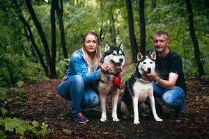 family with husky dogs in the forest