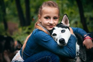 Girl and her dog husky on the background of leaves in spring