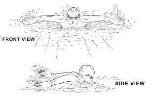 Swimming Action, Hand Drawn