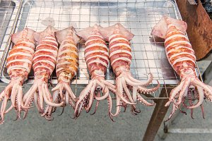 Grilled Squid or seafood
