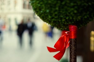 Ornamental tree with a red bow