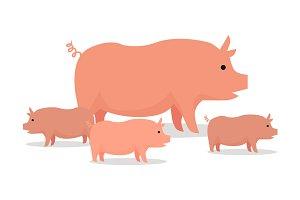 Pigs Flat Design