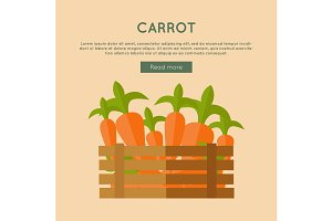 Carrot Vector Web Banner