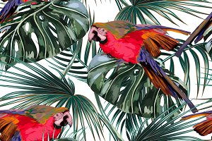 Parrots,tropical leaves pattern