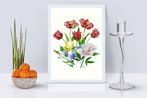 Bouquet with tulips, iris and peony