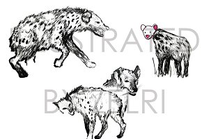 African Hyenas Ink Illustrations