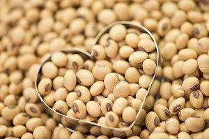 Soy bean on heart