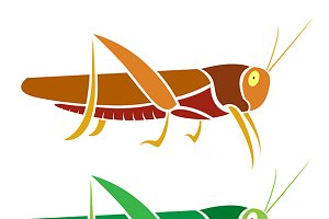 Vector image of an grasshopper.