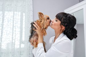 Girl kisses Yorkshire Terrier