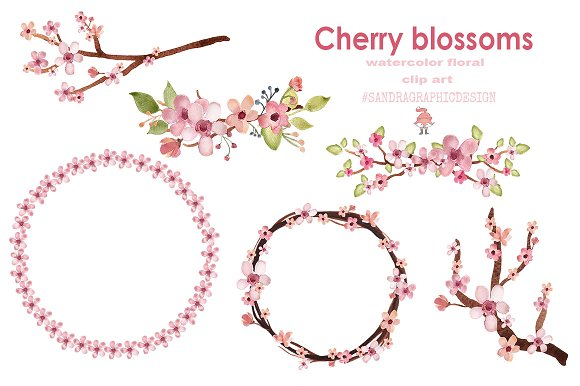 Cherry blossom watercolor clip art ~ Illustrations ~ Creative Market