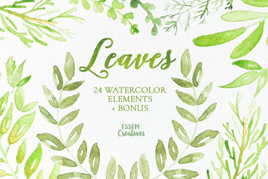 Watercolor Leaves Clipart Illustrations Creative Market
