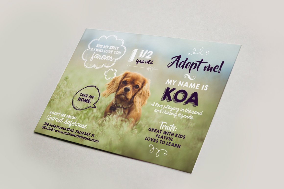 Cute pet adoption flyer bonus flyer templates for Dog adoption flyer template