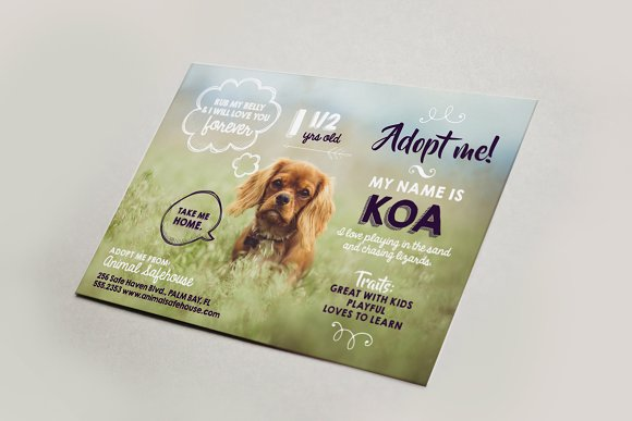 Cute pet adoption flyer bonus flyer templates on for Dog adoption flyer template