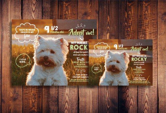 Cute Pet Adoption Flyer + Bonus