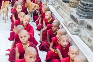 Tibet Novice Monks in India