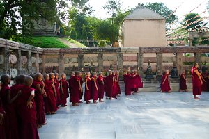 Tibetan Novice Monks in India