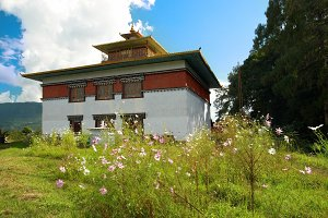 Indian buddhistic temple