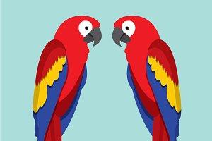 macaw/parrot vector