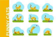 Funny cats. Flat illustrations set