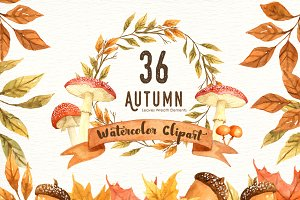 Autumn Leaf Watercolor Clipart