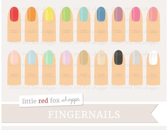 Fingernail Clipart Illustrations Creative Market