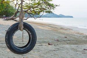 Tire swing under tree on beach