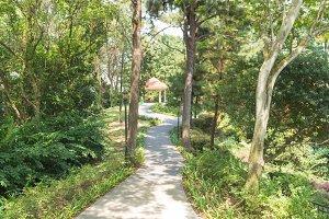 Sidewalk in park.