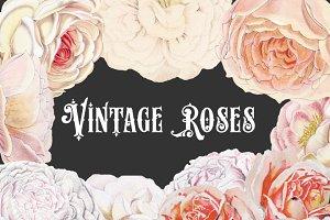 Vintage Pastel Roses