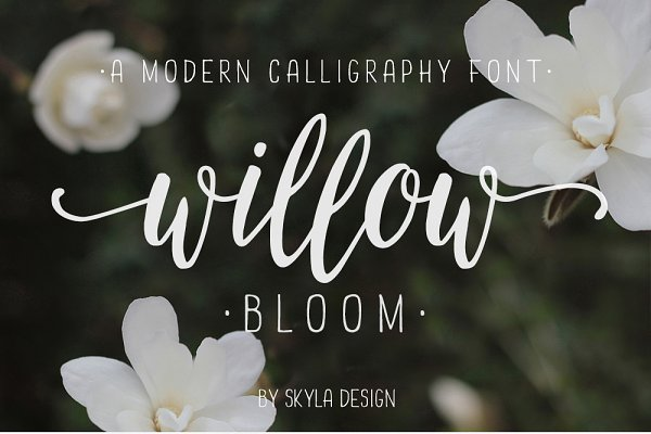 Modern calligraphy font Willow Bloo…