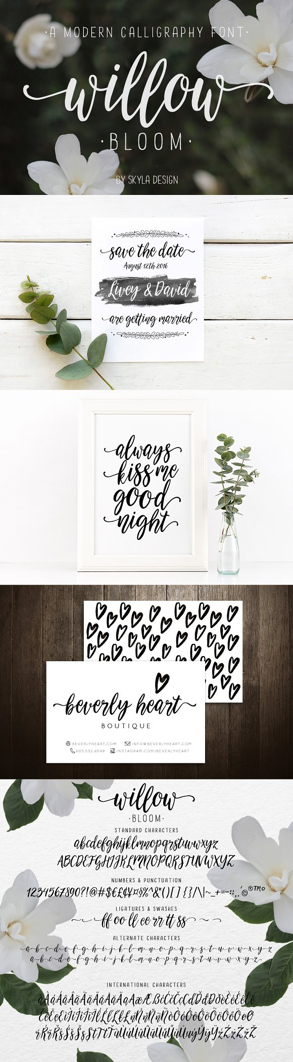 Modern calligraphy font willow bloom script fonts